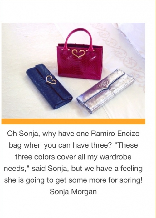 Sonja Morgan's handbags