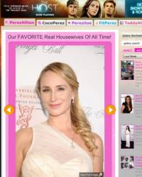 Perez Hilton\'s Favorite Housewives of All-Time, Sonja Morgan 2013