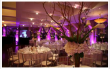 SITC Catering & Events